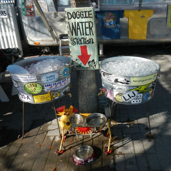 dogwaterstation